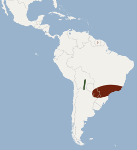 Distribution of Pygoderma bilabiatum.png