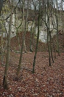Knap House Quarry, Birdlip