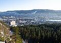 Drammen sett fra Hamborgstrømskogen mars 2020 (1).jpg