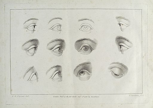 Drawings of Eyes in Ciprianii's 'Rudiments of Drawing.. Wellcome L0033914