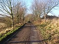 Driveway looking away from Whatfield Hall - geograph.org.uk - 1071028.jpg