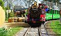 Drusillas Park's Safari Express Train Ride.jpg