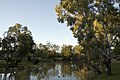 Dubbo NSW 2830, Australia - panoramio (166).jpg