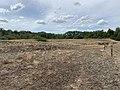 Dunes Charmes Sermoyer 23.jpg