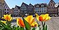 Durch die Blume gesehen, Bad Mergentheim im Frühling.jpg