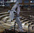 Eagles (10250122673).jpg