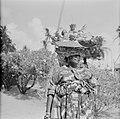 Een Creoolse vrouw in Coronie met mand met fruit op haar hoofd, Bestanddeelnr 252-4665.jpg