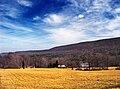 Eldred Townhip, Monroe County, Spring Cusp.jpg