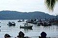 Embarcaciones pesqueras. - panoramio.jpg