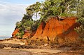 Erosion of Red Cliffs of Scarborough-6 (8980483359).jpg