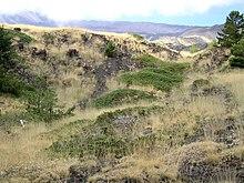 Etna 4.jpg