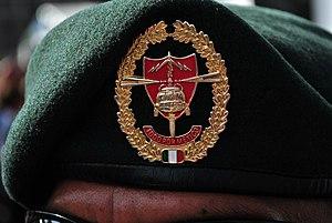 Cuerpo de Fuerzas Especiales - Official Cuerpo de Fuerzas Especiales green beret.