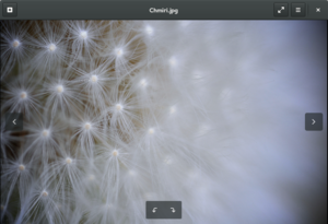 Eye of GNOME - Image: Eye of GNOME 3.16