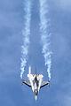 F-16C Fighting Falcon 05 (5969215937).jpg