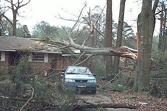 Fujita scale - F0 damage example