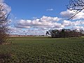Farmland, Inchinnan - geograph.org.uk - 1701877.jpg