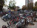 Ferrara, stazione, bikes (1).jpg