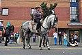 Fiestas Patrias Parade, South Park, Seattle, 2017 - 264 - horses.jpg