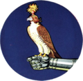 Fighter Squadron 142 (US Navy) insignia c1955.png