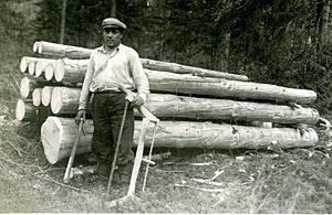 Finnish lumberjack of Yhtyneet Paperitehtaa in...