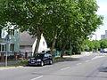 Finsterwalder Straße (Berlin-Wittenau).JPG