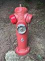 Fire hydrant at EuroDisney.jpg