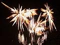 Firework 2a (8152378559).jpg