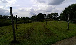 Flag Fen - Image: Flag Fen wooden posts