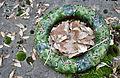 Fleurs de cimetière 29 01 2011 C 21.jpg