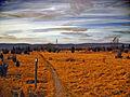 Flickr - Nicholas T - Long Walk.jpg