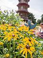 Flowers by pagoda (14843378641).jpg