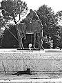 Fontana monumento ai caduti - particolare.jpg