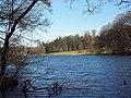 Fonthill Lake 1.jpg