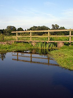 Footbridge across the Old River on Outney Common - geograph.org.uk - 224195