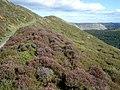 Footpath near Bryn-yr-odyn - geograph.org.uk - 541885.jpg