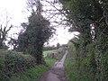 Footpath to the Edge - geograph.org.uk - 780023.jpg