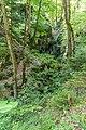 Forest near Gorges du Pont du Diable 04.jpg