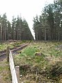 Forest track by Loch Ashie - geograph.org.uk - 169956.jpg