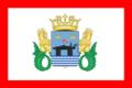 Fort Roughs Flag 01.png