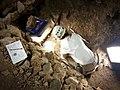 Fouille programmée grotte du Mas d'Azil.jpg