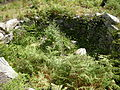 Foxo do Lobo de Gargamala, Mondariz.jpg