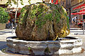 France-002446 - Roman Hot Fountain (15706195140).jpg