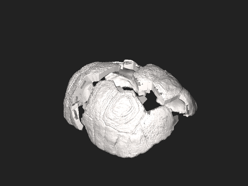 File:Freddy tortoise 3D artificial shell.stl