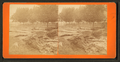 Freshet in 1876, Dubuque, Iowa, by Root, Samuel, 1819-1889 3.png