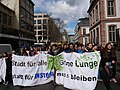 Fridays for Future Frankfurt am Main 08-03-2019 37.jpg
