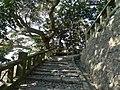 Front approach to Kunōzan Tōshō-gū 08.jpg