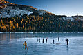 Frozen Tenaya Lake II (6618561709).jpg