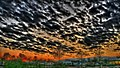 GIPE25 - sunrise (by).jpg
