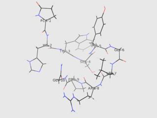Gonadotropin-releasing hormone mammalian protein found in Homo sapiens