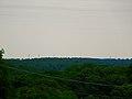 Galactic Wind Farm - panoramio (8).jpg